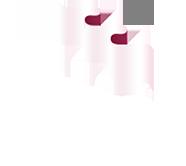 לוגו מדרג